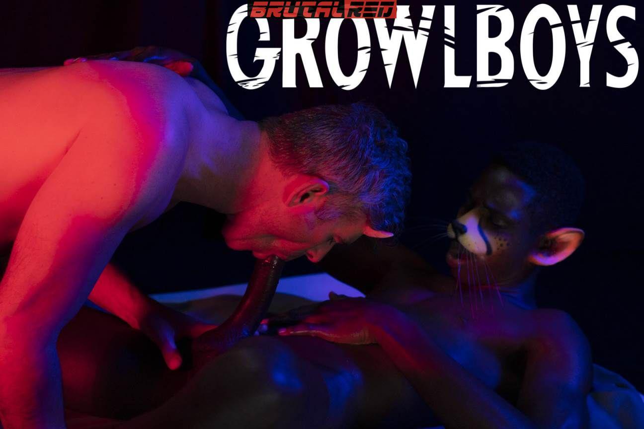 GrowlBoys - Sweet Cat: Damien Oaks Fucks Drake Magnum 1