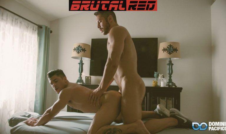 Seth Santoro Fucks The Swollen Cunt Of Armond Rizzo 2