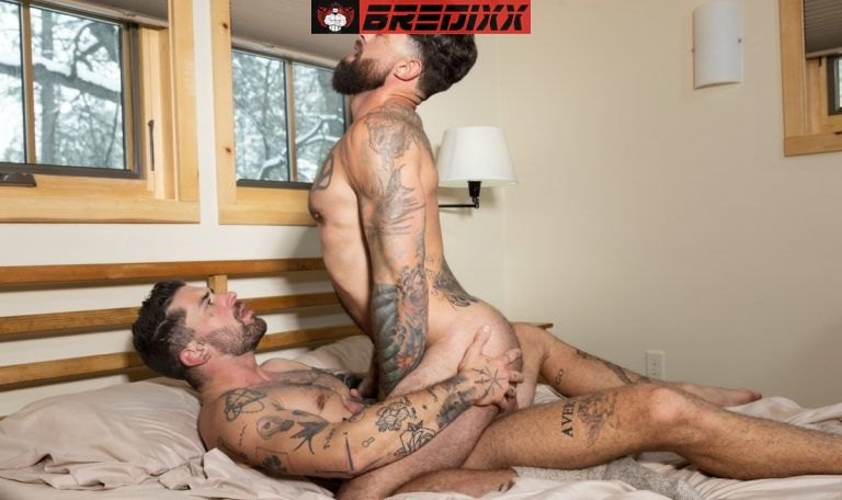 Mountain Tops: Chris Damned & Alpha Wolfe 3