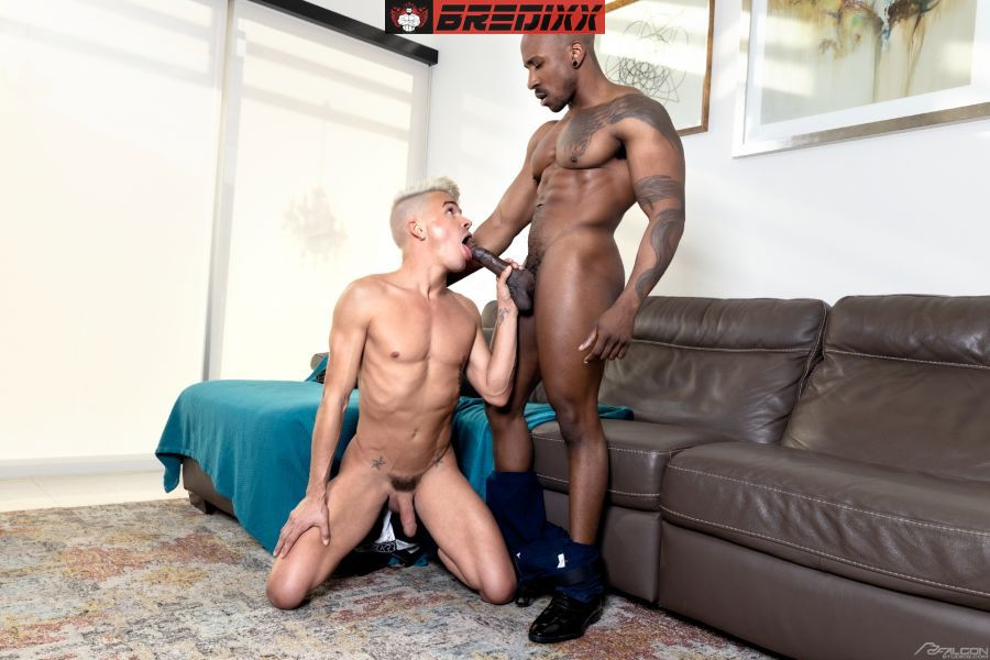 Work From Home: Andy Taylor & Max Konnor 2