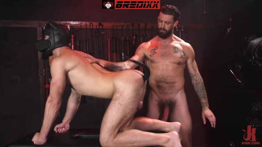 In The Doghouse: Alpha Wolfe & Riley Landon 2