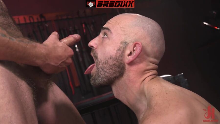 In The Doghouse: Alpha Wolfe & Riley Landon 5